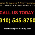 Professional Carpet Cleaning in L.A. | (310) 545-8750