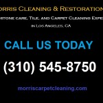 Professional upholstery cleaning | (310) 545-8750